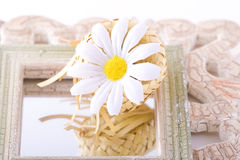 Composition avec des fleurs. Photo stock
