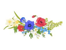 Composition avec des fleurs d'été : pavot, jonquille, anémone illustration libre de droits