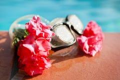 Composition avec des glaces et des fleurs de natation Photographie stock libre de droits