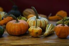 Composition avec des potirons de Halloween photo libre de droits