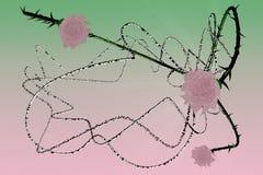 Composition avec le jewelery et lumière (pink&green) Photographie stock libre de droits