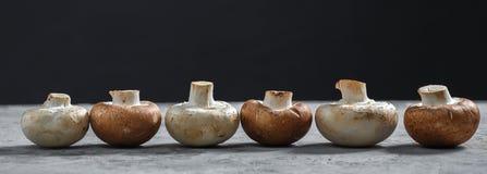 Composition avec les champignons frais de champignon de paris sur le conseil en bois Type rustique images libres de droits