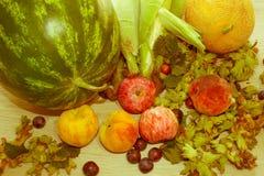 Composition avec les fruits, fruits sur la table Fruits frais d'été dessus Images libres de droits
