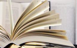 Composition avec livres reliés dans la bibliothèque Photos libres de droits