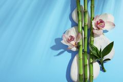 Composition with bamboo branches, flowers and spa stones on color background, top view. Space for text royalty free stock image