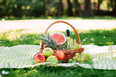 Composition of a basket with fruits and wine in the park Stock Image