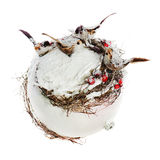 Composition from birds, mountain ashes Royalty Free Stock Photo