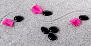 Composition of black pebbles with flower petals Stock Photos