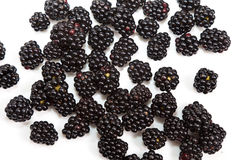 Composition of black raspberries Royalty Free Stock Image