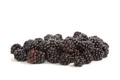 Composition of black raspberries Stock Photos