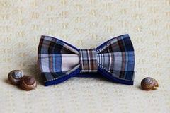 Composition : Bleu à carreaux exagéré avec un noeud papillon noir, coquilles des escargots sur un fond beige Photo libre de droits