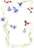 Composition from blue handbells and bright, ripe currant Royalty Free Stock Image
