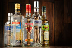 Composition with bottles of vodka Royalty Free Stock Image