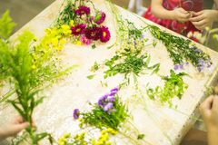 Composition for bouquet: flowers, ribbons, grass Stock Image