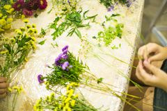 Composition for bouquet: flowers, ribbons, grass Royalty Free Stock Images