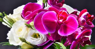 Composition with bouquet of freshly cut flowers Royalty Free Stock Image