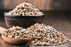 Composition with bowl of shelled sunflower seeds on wooden table Stock Photos