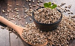 Composition with bowl of shelled sunflower seeds on wooden table Royalty Free Stock Photos