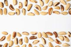 Composition with Brazil nuts and space for text on white, top view. Composition with Brazil nuts and space for text on white background, top view royalty free stock image