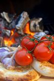 Composition with Bread, tomatoes and garlic Royalty Free Stock Images