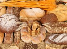 Composition of breads and wheat. Close up. Royalty Free Stock Image