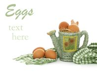Composition of brown fresh eggs and watering can o Royalty Free Stock Photography