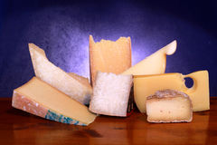 Composition of cheese Royalty Free Stock Images