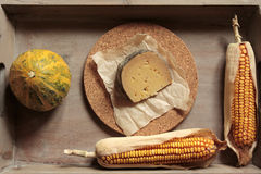Composition with cheese. A plate of rustic ingredients Royalty Free Stock Image