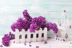 Composition chic minable en fleurs Images stock