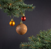 Composition with Christmas tree and Christmas decoration balls, Stock Images