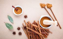 Composition of cinnamon stick and cinnamon powder in white morta Royalty Free Stock Photos