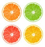 The composition of citrus slices royalty free stock images