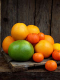 Composition of citrus on wooden background: tangerines, oranges, sweetie, lemon. Side view Stock Images