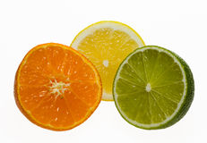 Composition of citruses Royalty Free Stock Image