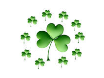 Composition with Clover Leaves Royalty Free Stock Images