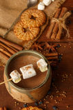 Composition of cocoa with marshmallow, biscuit cookies, anisetre Stock Photography