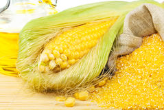 Composition from corn, maize flour and corn oil. On the mat on white background Royalty Free Stock Photos