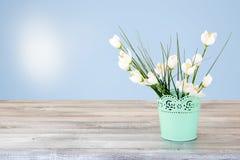 Composition décorative de bouquet de fleurs blanches sur lumineux rustique Photos stock