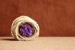 Composition décorative de ficelle et de fleurs sur un fond brun Photo stock