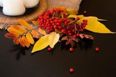 Composition d'automne des feuilles, des baies et des bougies Image libre de droits