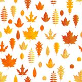 Composition d'automne L'érable sans couture d'automne part du modèle ENV 10 illustration de vecteur