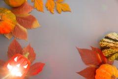Composition d'automne Potirons, cric-o-lanterne effrayante de Halloween vieille avec l'intérieur rougeoyant de yeux et feuilles s image libre de droits