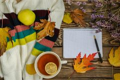 Composition d'automne Tasse de thé, pomme, feuilles d'automne sèches, chandail beige sur le fond en bois image stock