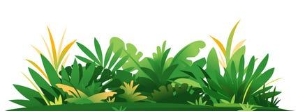 Composition d?corative des usines de jungle sur la terre illustration stock