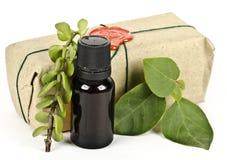 Composition d'huile aromatique avec des herbes photos libres de droits
