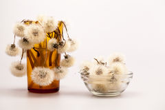 Composition with dandelion seeds and small glass objects Royalty Free Stock Photos