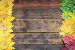 Composition de beaucoup feuilles d'automne tombées de jaunissement sur une surface de fond des panneaux en bois naturels du colo  image libre de droits
