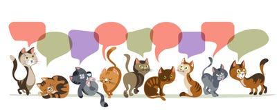 Composition de causerie en chatons Photos libres de droits
