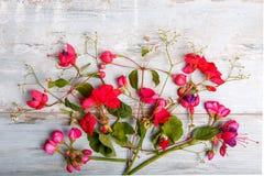Composition de fête en fleur sur le fond en bois blanc Vue supplémentaire Photographie stock