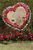 Composition de fleur Amour, coeur, roman Image libre de droits